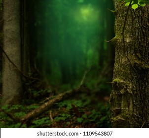 Dark forest, blue haze, old trees, blurred background, mysterious light
