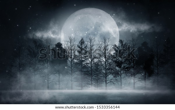 Dark forest. Gloomy dark scene with trees, big moon, moonlight. Smoke, shadow. Abstract dark, cold street background. Night view.