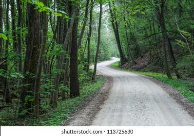 Dark forest road