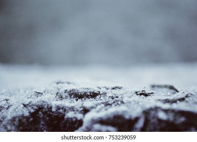 Dark gloomy cold breeze,winter abstract texture close up of frozen rock with moss, freezing icy and snow. White blue black scenery background. Place for text, background.