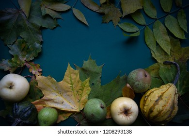 Dark green blue autumn top view background frame