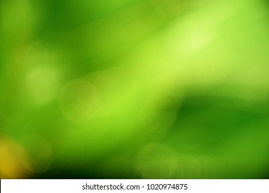 dark green color abstract bacground withe blurred defocus bokeh light for template