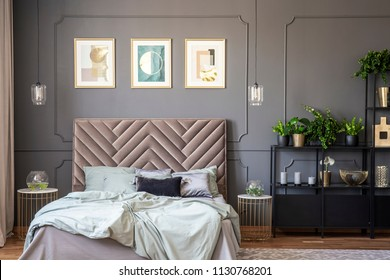 Dark grey bedroom interior with wainscoting on the wall, king-size bed with soft bedhead, three posters and metal rack with plants and decorations