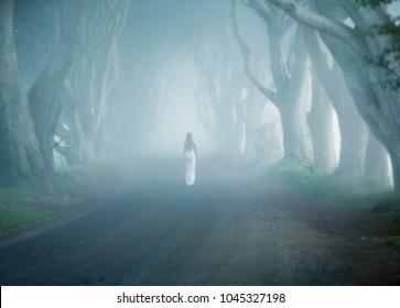 Dark Hedges, Ireland, fogy tree lined road, woman walk away in white long dress