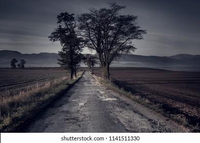Dark magic road in autumn season.