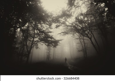 dark misty forest with man on path vintage sepia