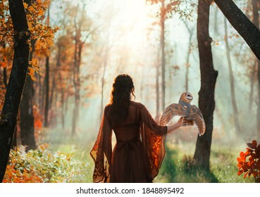 Dark mysterious blurred silhouette of a woman with an owl that sits on her arm and flaps her wings. Fantasy photography a girl fairy walks in misty dense autumn forest. Back rear view. Red silk dress
