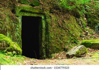 dark and mysterious moss overgrown entrance to stone cellar in the forest near Dolny Mlyn in Bohemian Switzerland national park