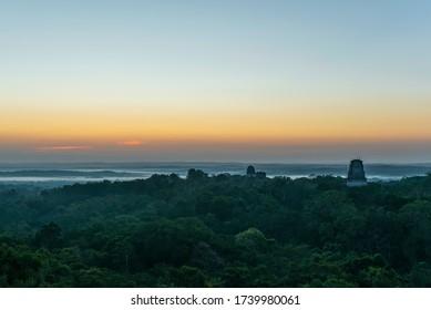 The dark and mysterious Peten rainforest just before sunrise, Tikal Mayan Ruin, Guatemala.