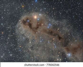 "Dark nebula complex in the constellation Cepheus ""The Ugly Fish"" (LDN 1250)"