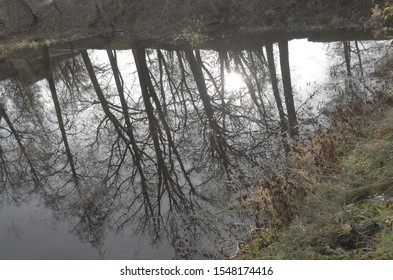 a dark pond with reflections of the sky, trees and houses