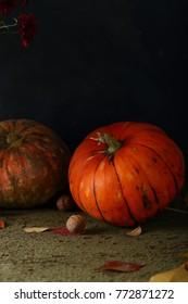 Dark pumpkin background, food closeup