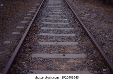 a dark railroad track straight in the vertical line