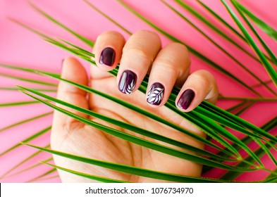 dark red manicure  with palm trees on a pink background