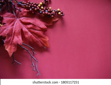 Dark Rich Red Leaves Berries and Brown Twig Framing Blank Maroon Background Autumn Leaf Fall Colors Halloween Thanksgiving Christmas Copy Space for Advertisements and Stationary October November