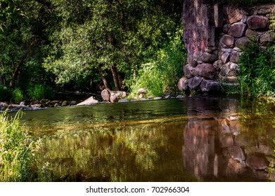 The dark river in the depths of the forest