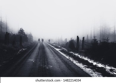 Dark road leads up to the foggy Brocken mountain