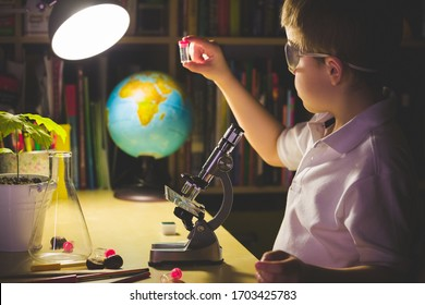 In a dark room at the table,a boy conducts scientific experiments with a microscope. A young scientist is experimenting in a home laboratory. Early development of children. Toning and artificial noise