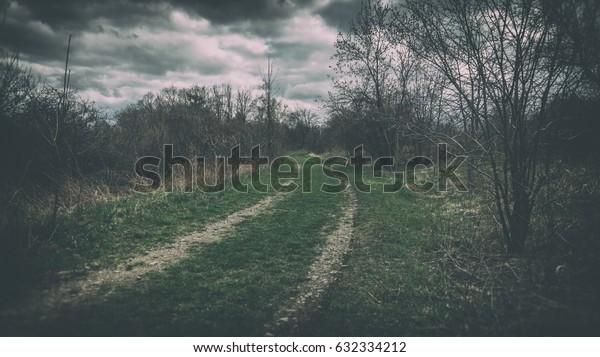 Dark Rural Road. Rural road through agricultural fields during a dark late winter.