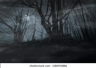 dark scary forest night with old twisted tree branches in moonlight, fantasy landscape