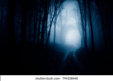 dark scary forest road at night, surreal atmosphere