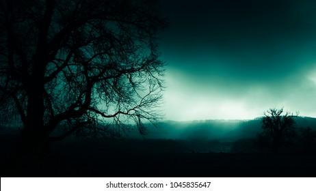 dark scary night landscape
