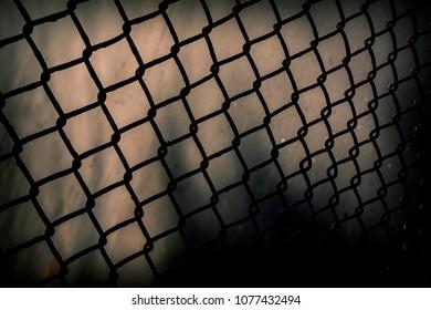 dark silhouette of the enclosing mesh