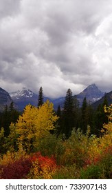 Dark storm clouds billow over mountain peaks dusted with snow. Multcolored Fall foliage fills the foreground of this scene in Montana's Glacier National Park.