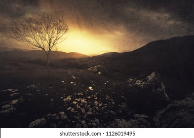 dark sunset landscape with tree on hill and dark sky with storm clouds