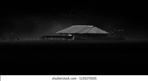 A dark tin shed house of a village isolated unique photograph