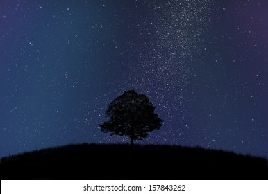 Dark tree silhouette in front of starry sky and milky way