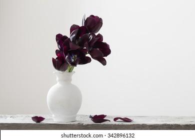 dark tulips in vase