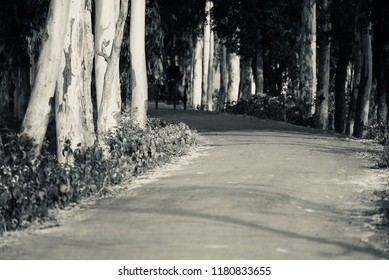 A dark urban road isolated unique photograph