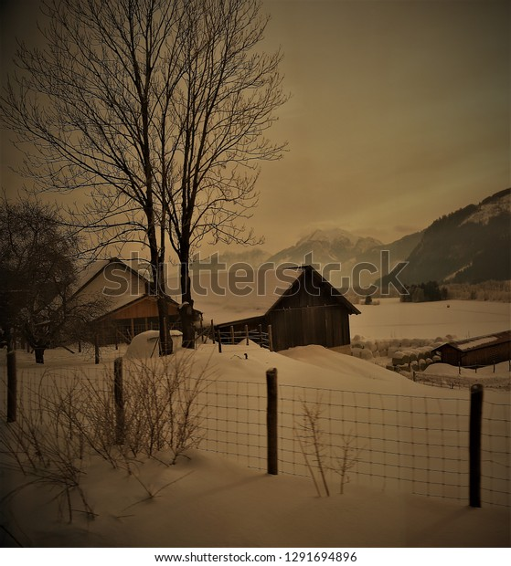 Dark vignette of hut with snow and tree