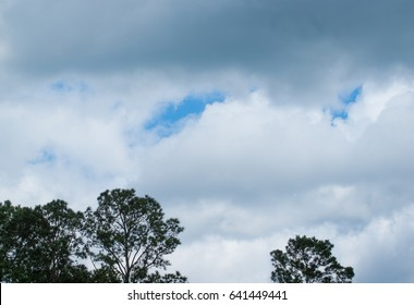 Dark and white clouds with blue sky and dark trees in foreground
