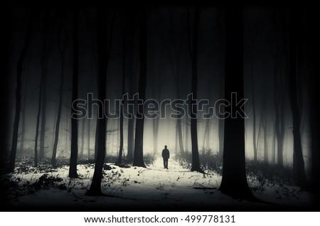 dark winter forest stock photo edit now 499778131 shutterstock