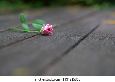 Dark wood background with a pink rose at the side and copy space the rest of the image