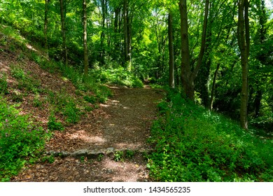 Dark woodland path bordered by Ash trees leads up hill to the top of High Tor in Matlock, Derbyshire