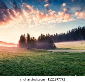 Darmatic summer sunrise in Durmitor National Park. Exciting foggy scene of Montenegro countryside, Zabljak town location. Beautiful world of Mediterranean countries. Traveling concept background.