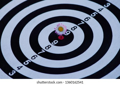 Dartboard with arrows hitting the center target. Outdoor.