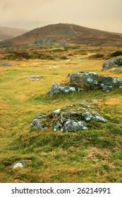 Dartmoor, Devon