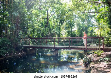 Darwin,Northern Territory/Australia-February 25,2018: Tourist on footbridge over stream in the rainforest botanical garden in Darwin, Australia