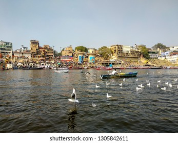 Dashashwamedh Ghat, River Ganges, Varanasi, Uttar Pradesh, India; 30-Jan-2019; a fisherman rowing a boat in the Ganges and some Siberian migratory birds swimming and a bird flying by