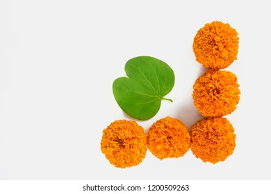 Dashera Festival apta leaf with rice and marigold flower