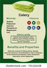 Data sheet on the nutritional composition (vitamins, minerals and amino acids) of Celery and their health veneers