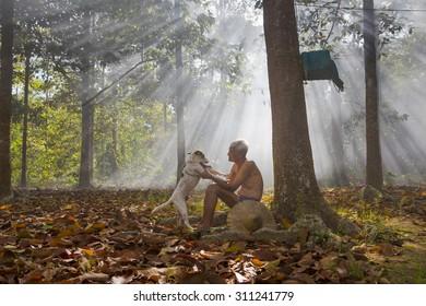DAU TIENG, BINH DUONG, VIETNAM: November 24, 2013. A view man take care dog in ray of sunshine. DAU TIENG, BINH DUONG, VIETNAM: November 24, 2013