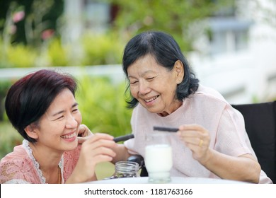 Daughter caring for the elderly asian woman ,picking a chocolate cookie to mother in backyard.