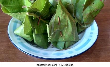 Daun Jati is a teak leaves for traditional food packaging