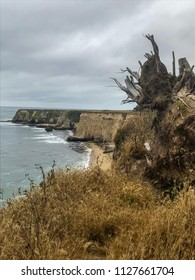 Davenport Pier, Northern California. The view from the cliffs above Four Mile Beach near Davenport California. Brown wild vegetation on a hill.