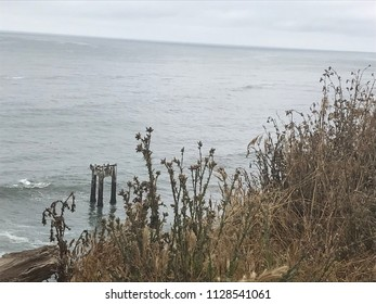 Davenport Pier, Northern California. The view from the cliffs above Four Mile Beach near Davenport California. Brown wild vegetation on a hill. Ocean view.